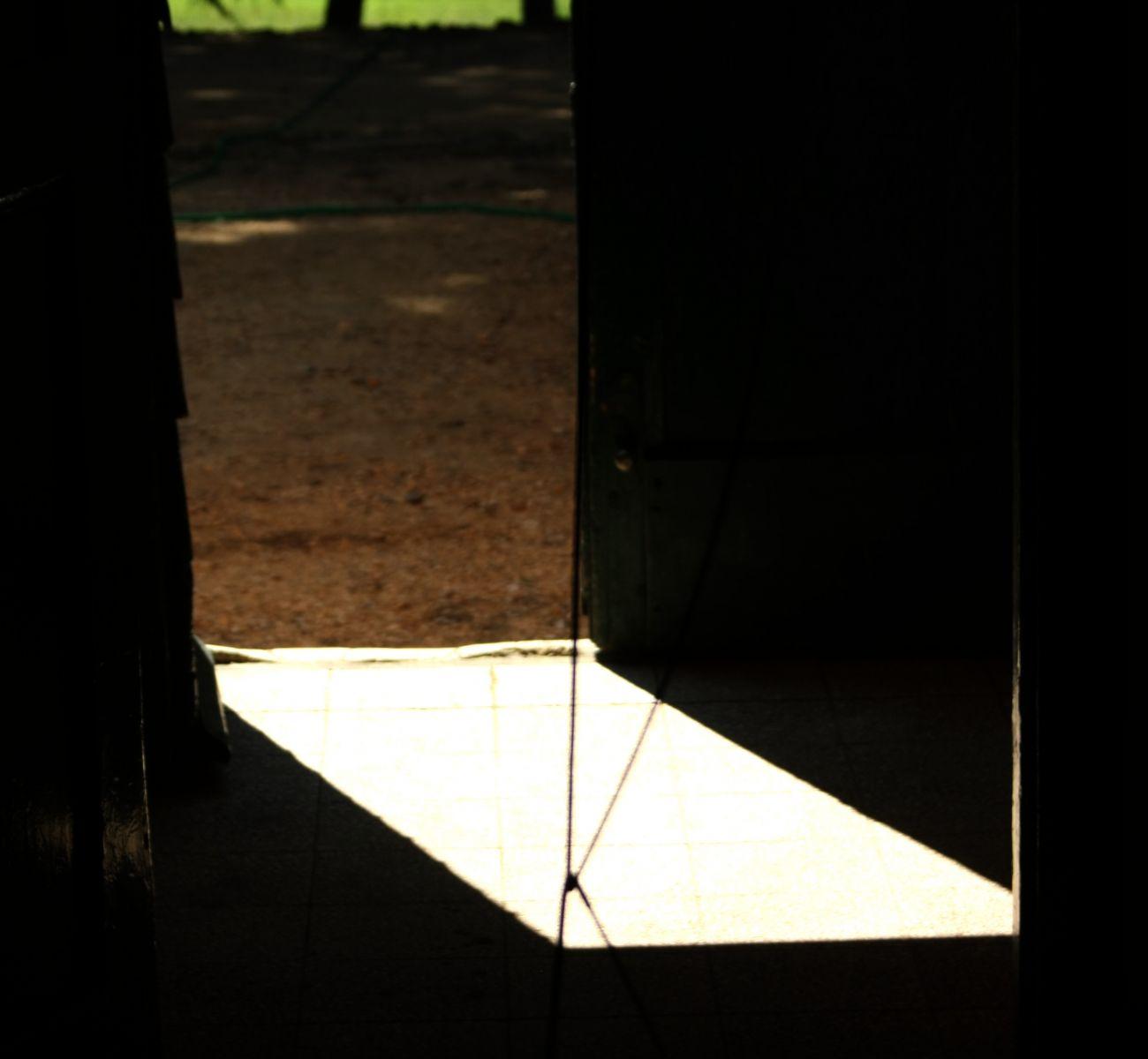 Licht- Schatten-Komposition, 2017